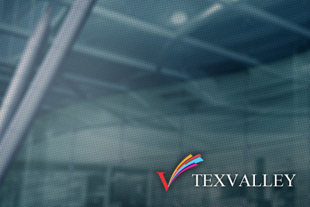 TexValley Website
